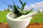 Гомеопатия при ишемической болезни сердца