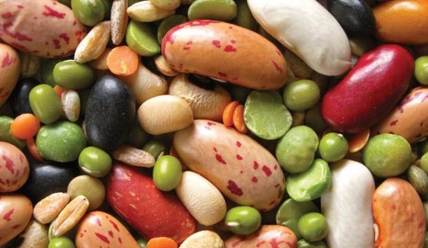 Использование бобовых в диетах