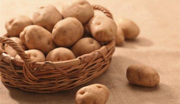 Использование картофеля в диетах