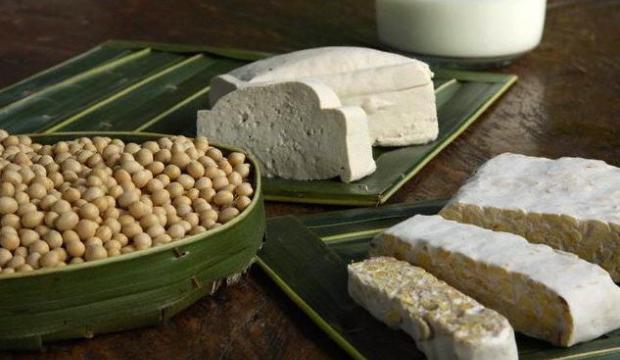 Использование кулинарных блюд из сои в диетах