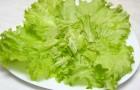 Кулинария для диабетика — салат посевной