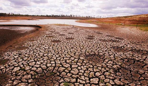 5 продуктов, которые пропадут при глобальном потеплении