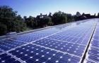 Беспроигрышное решение: сады под солнечными батареями