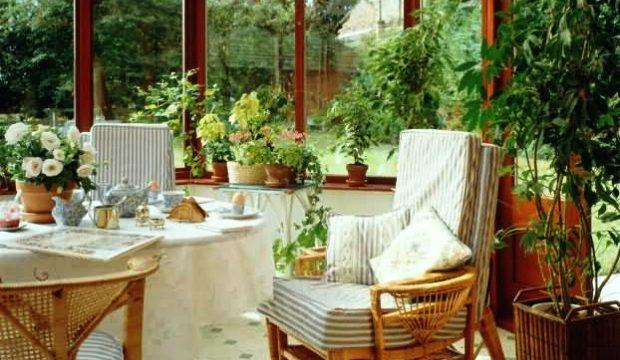 Формы и приемы размещения растений