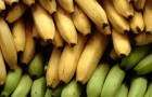 Овощи и фрукты, богатые триптофаном, спасут от бессонницы