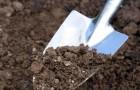 Подготовка почвы к посадке деревьев