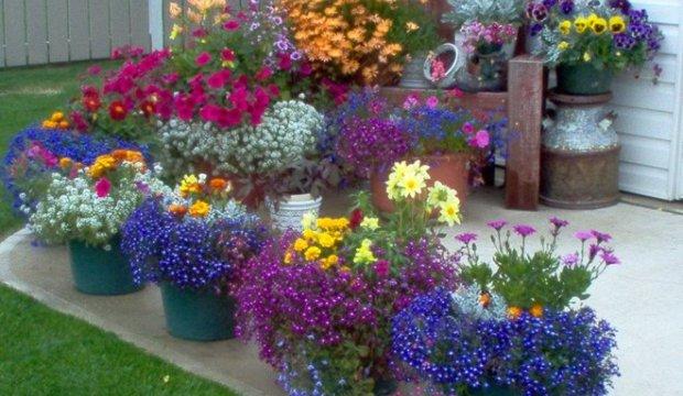 Стационарные цветочные емкости