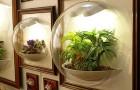 Витрины-флорариумы