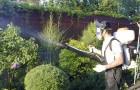 Лучшие естественные методы борьбы с садовыми вредителями