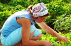 А какой вы садовод? Выберите из шести типов