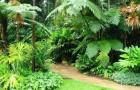 Ботанические сады Флекера
