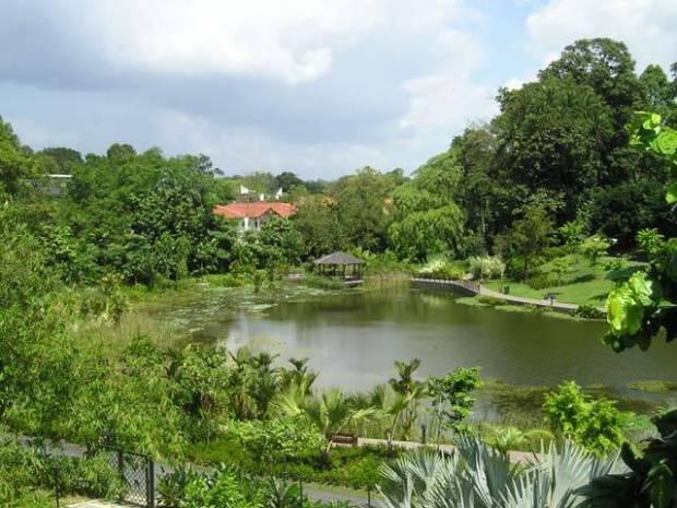 Ботанические сады Сингапура