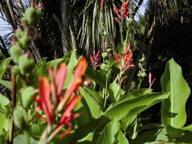 Ботанические сады Вовилля