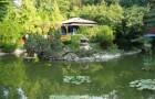 Ботанический сад Клуж