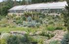 Ботанический сад Мексиканского университета