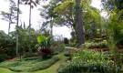 Ботанический сад Уилсона