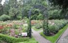 Ботанический сад Варшавы