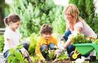 Дети совсем не против проводить время в саду