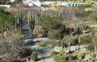 Этноботанический сад