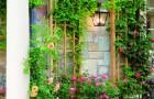 Формирование пристенного растения