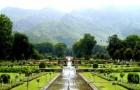 Ивовый фонтан