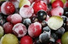 Как замораживать овощи без потерь