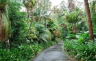 Королевский парк и ботанический сад