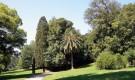 Королевский сад Саварсин