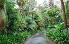 Национальные ботанические сады Австралии