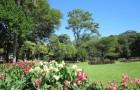 Национальный Ботанический сад Натала