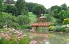 Парк цветов Апремон