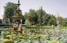 Сад Девушек