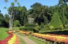 Сад Фуллин