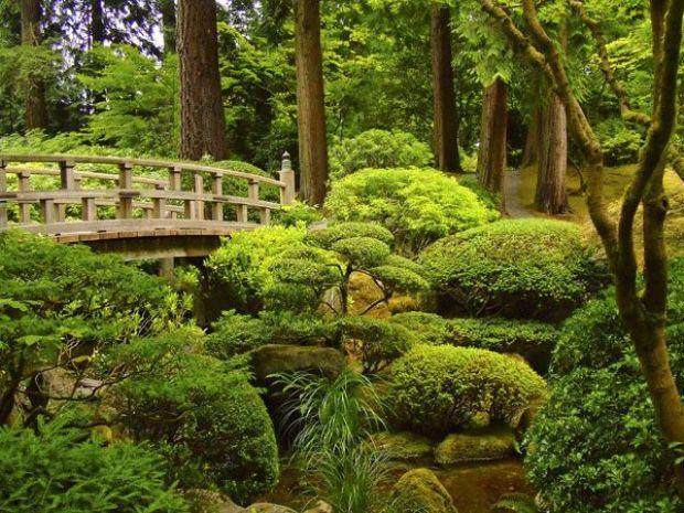 Сад гармонического удовольствия