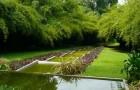 Сады Бриф