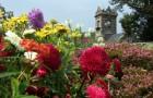 Сады Да Сеньёри