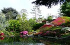 Сады при музее Альберта Кана