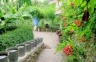 Сады рая