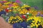 16 сентября 2014 года: удобряем грядки и цветники