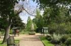Аптекарский сад Челси