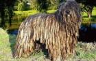 Бергамская овчарка