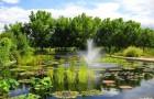 Ботанические сады Денвера