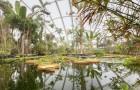 Ботанический сад Аархуса