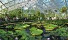 Ботанический сад Доуик