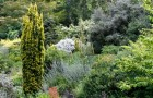 Ботанический сад Элизабет Кэри Миллер