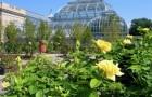 Ботанический сад Логан