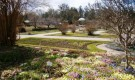 Ботанический сад Мюнхен-Нимфенбурга