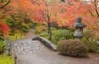 Дендрарий и Японский сад парка имени Вашингтона