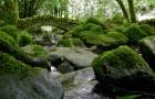 Горная долина и водопад Килфейн