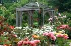 Исторические сады Аннаполиса-Рояля